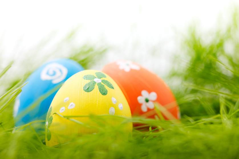 easter eggs.jpg.838x0_q67_crop-smart
